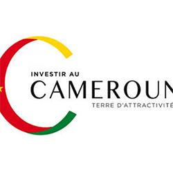 Investir au Cameroun - Logo